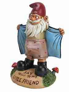Flashing Garden Gnome Rude Garden Gnome